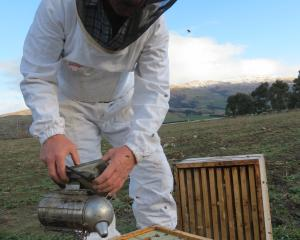 Russell Marsh, of Marsh's Honey, Ettrick, is in favour of upskilling the industry. Photo: Yvonne...