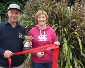 Jenny and Colin Phillips, of Tuatapere, have the Fernhill Limousin stud and recently won the ``on...