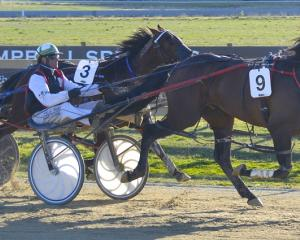 Storm Prince and driver Blair Orange beat Homebush Lad and Ben Hope to win the Kurow Cup recently...