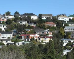 Should tenants of rental properties be contributing to payment for council services? Photo: ODT...