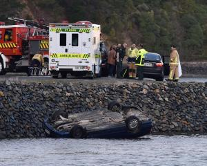Emergency services at the scene, between Hamilton Bay and Dowling Bay. Photo: Peter McIntosh