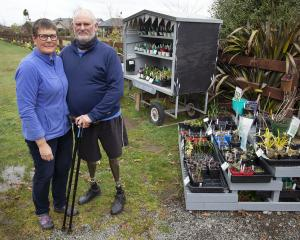 Helen and Brian Coker have lost 40 plants valued at around $200 in the latest of several thefts...