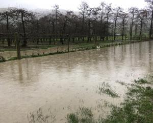Flooding at Dumbarton Orchard, between Roxburgh and Ettrick. Photo: Simon Henderson