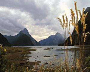 Fiordland's Milford Sound. Photo supplied.