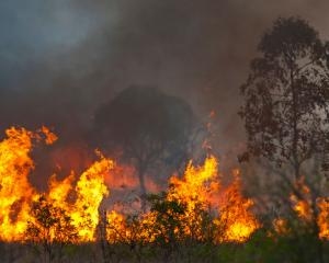 Over 50 bushfires are burning across the state of Queensland, prompting hundreds to evacuate...