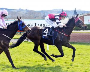 Lochan Ora and rider Kozzi Asano win the South Otago Cup over Just Push Play and Chris Johnson at...