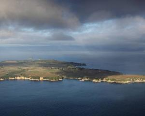 Motiti Island of the Bay of Plenty coast. Photo: NZME