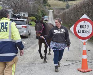 Melissa Randwick evacuates her 15-year-old mare Jenny from a Rudd Rd property.  PHOTOS: GERARD O...
