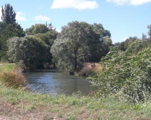 North Canterbury's Cam River has won third place in the New Zealand River Awards. Photo: CRL files