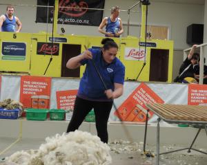 Eventual winner Pagan Karauria, from Alexandra, clears the floor in the open woolhandling final....