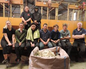 Attending the Elite Shearer Training beginner shearing course near Waimate last week were (back,...