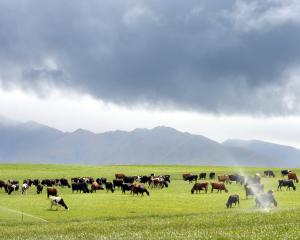 Irrigation has transformed large swathes of the North Otago countryside. PHOTO: STEPHEN JAQUIERY