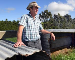 Kerry Dwyer pictured on his North Otago farm in March last year when his calf shelter sheds were...