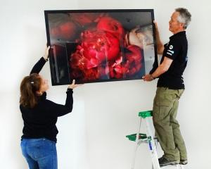 Wanaka Arts President Vicky Fulton and John Hare prepare to hang a photo in the Wanaka Community...