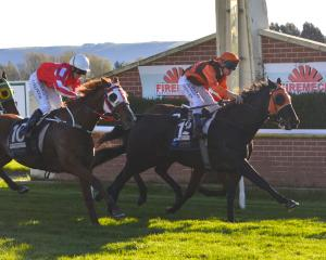 Nomen Ludi and rider Terry Moseley beat Smiling Assassin and Lisa Allpress and The Gordonian and...