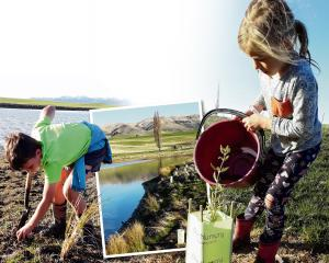 Eddie Weir, left, (8) gets stuck in digging holes for riparian planting. Marley Weir (7) helps...