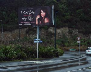 A Dunedin billboard was deemed objectionable by one resident. Photo: Linda Robertson