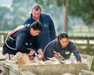 Students Redginald Reihana and Mihiora Waipouri drenching under the guidance of  Tutor: Allan...