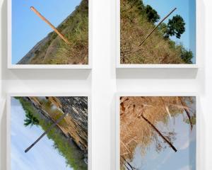 David Rickard, X, C-Type Photographs, 2018.
