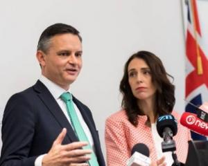 Prime Minister Jacinda Ardern and Climate Change Minister James Shaw. Photo: NZ Herald
