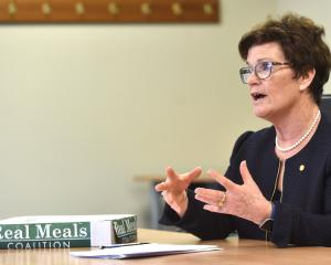 Southern District Health Board commissioner Kathy Grant deflects criticism during controversy...