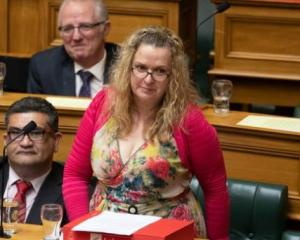 Labour list MP Jan Tinetti during Question Time. Photo: NZ Herald/File
