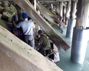 As crews worked to repair severely deteriorated wooden piles under Holmes Wharf, in Oamaru, in...