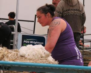 Pagan Karauria, of Alexandra, pictured at the New Zealand Merino Championships in Alexandra in...