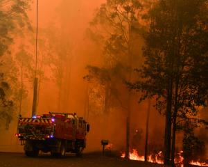 Fire trucks are seen during a bushfire in Werombi, 50 km southwest of Sydney. Photo: Reuters