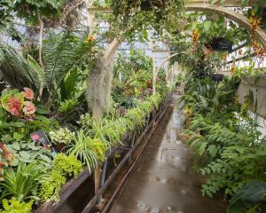 The Botanic Gardens. Photo: Geoff Sloan