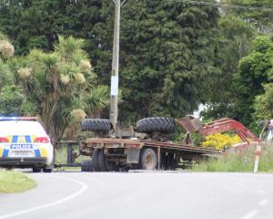 Emergency services at the scene of the crash today. Photo: Laura Smith