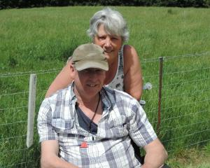 Murray and Gaynor Smith have no cattle to eat the feed that has sprung up on their Livingstone...