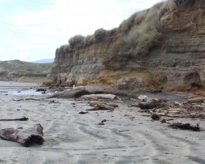 Coastal erosion in Southland is highlighted at several beaches — rising sea levels and increasing...