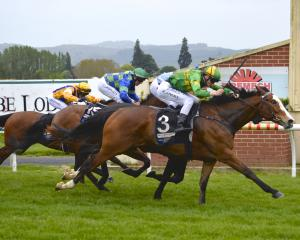 Outram and Jacob Lowry power home to win on Melbourne Cup day at Wingatui for trainers Brian and...