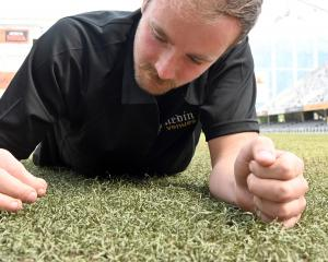 Overseeing the biennial re-turfing of the grass is Forsyth Barr Stadium turf manager Michael...