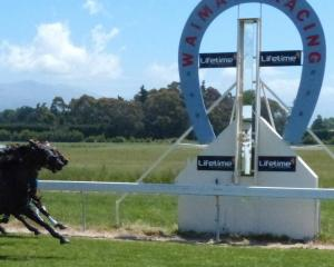 The Waimate racecourse is one of those affected by the Messara Report. Photo: ODT files