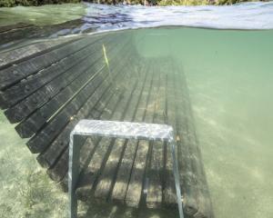 A park bench is submerged in Lake Wanaka. PHOTO: RICHARD SIDEY/GALAXIID