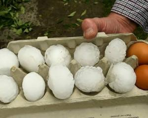 An egg tray shows the scale of some of the hailstones. Photo: Luke McGoldrick via NZ Herald