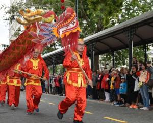 Dragon dancing at last year's Chinese New Year celebration in Dunedin. Photo: Gregor Richardson