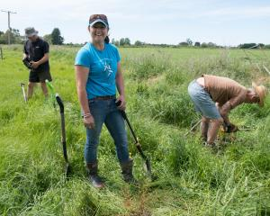 Kaikoura Plains Recovery Project manager Jodie Hoggard helps out at a farmer-led planting day on...