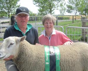 Paul and Kay Gardner with a Texel ram hogget. Photo: Toni Williams