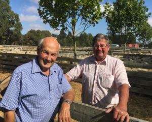 John Sidey (left), of Waikari, and Keith Berry, of Waipara, reminisce about old times at the...
