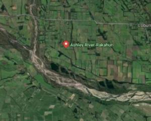 A toxic blue-green algae has been found in the Ashley/Rakahuri River at the Rangiora-Loburn...