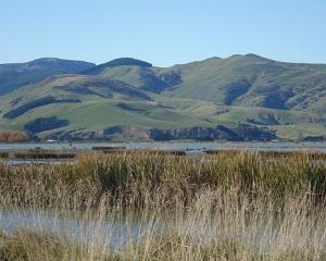 Lake Ellesmere Photo: RNZ