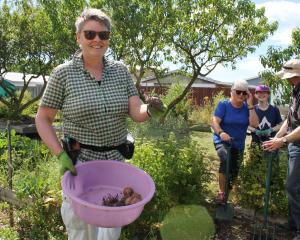 Linwood community garden volunteers Annette Walker (left) and Mary McNaughtan, Jazz Dunning and...
