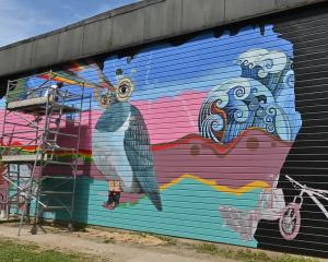 Dunedin artist and relief teacher Guy Howard-Smith is working on a large mural on the side of...