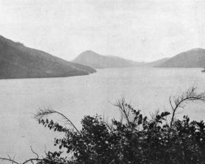A scene in Pelorus Sound, one of the beautiful fiords in North Marlborough. — Otago Witness, 13.1...
