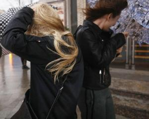 Windy weather on the street, umbrellas. Photo: Getty Images