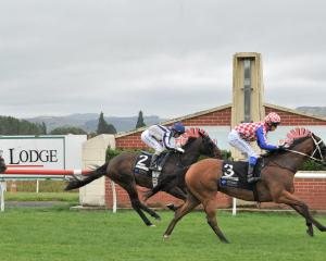 Zabay, with stable apprentice Corey Campbell aboard, beats Showpin (kylie Williams) to win the...