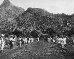 Samoan boys lined up ready for an agricultural class conducted by New Zealand teachers, Messrs...